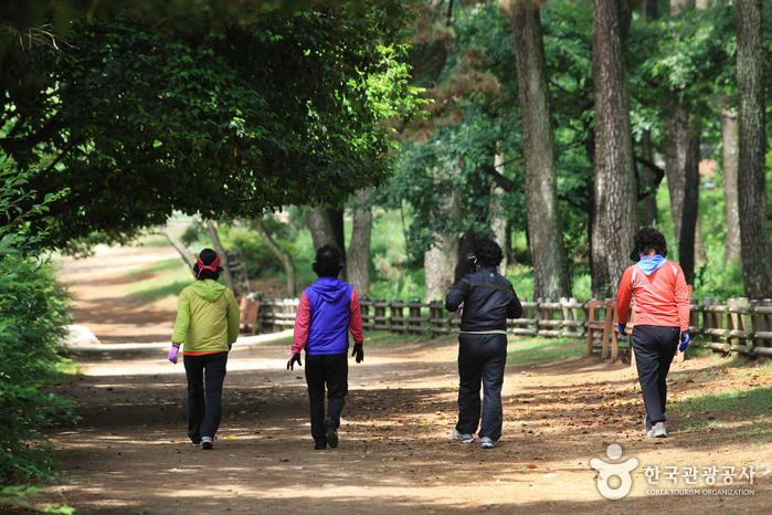 Парк Тэванам (대왕암공원)14