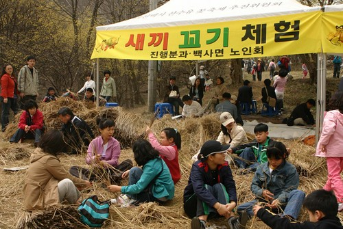 Festival de las Flores de Sansuyu Baeksa en Icheon (이천 백사 산수유꽃축제)5