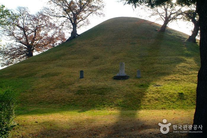 Geumgwanchong Tomb (금관총)