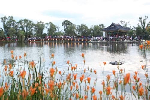 Фестиваль лотосов Пуё Содон (부여서동연꽃축제)18