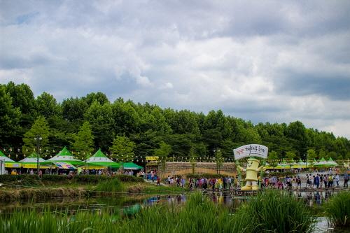 潭陽竹子節(담양대나무축제)