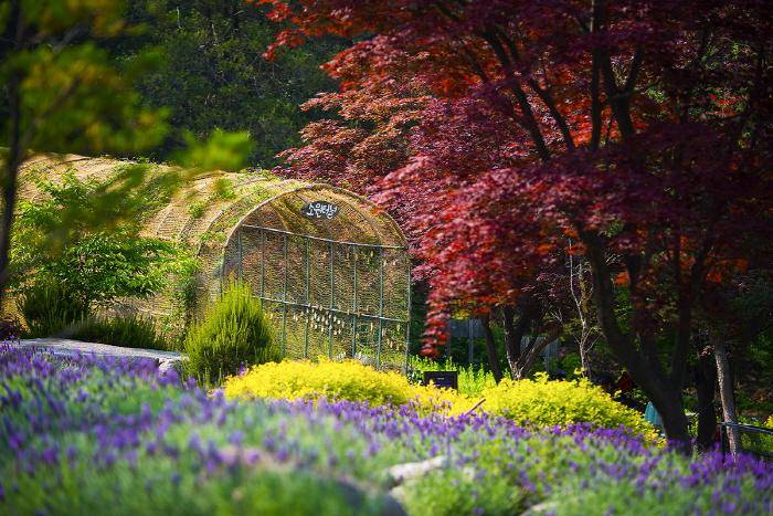 산들소리수목원 사진7
