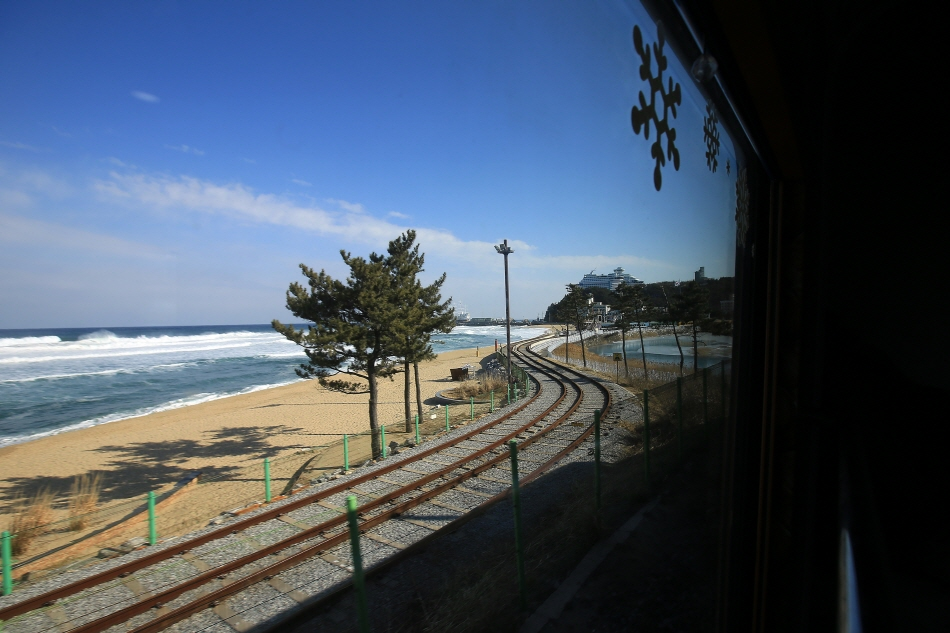 자연을 상영하는 기차, 바다열차 & 정선아리랑열차