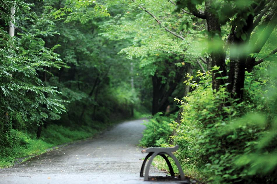 망우산 사색의 길
