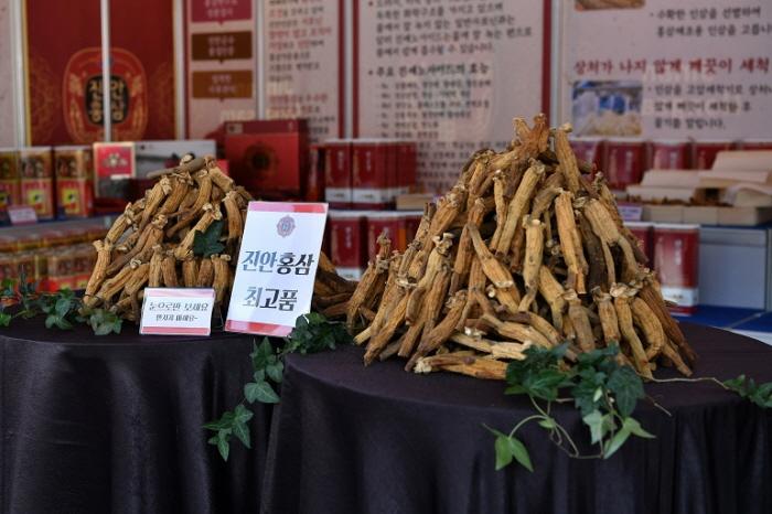 [문화관광축제] 진안 홍삼축제 2019
