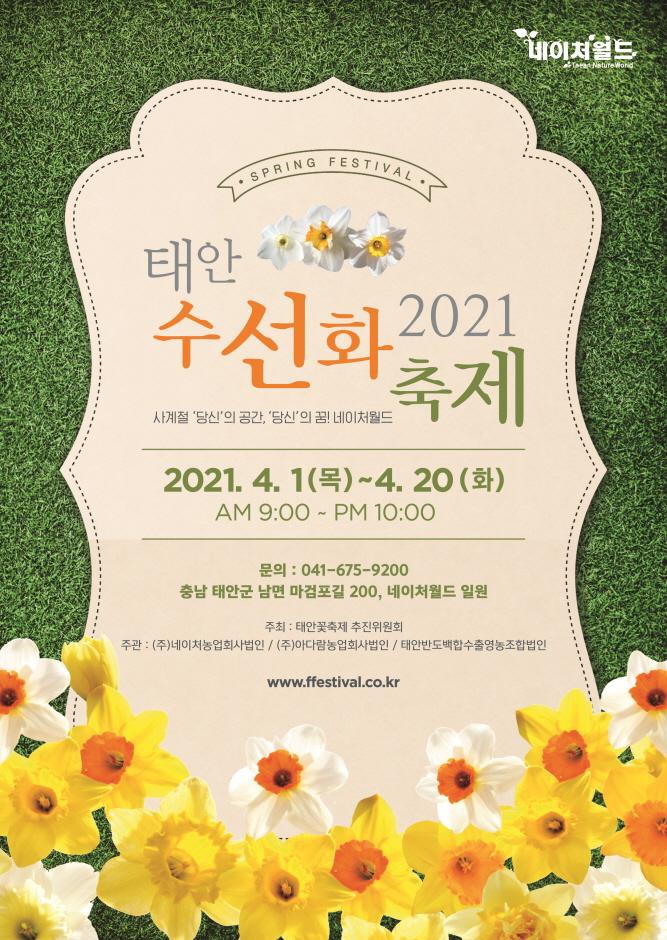 태안 수선화&루피너스 꽃 박람회
