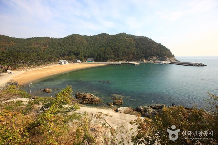 Bangjukpo Beach (방죽포해변)