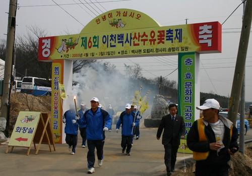 Festival de las Flores de Sansuyu Baeksa en Icheon (이천 백사 산수유꽃축제)4