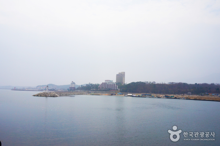 Daepohang Port (대포항)