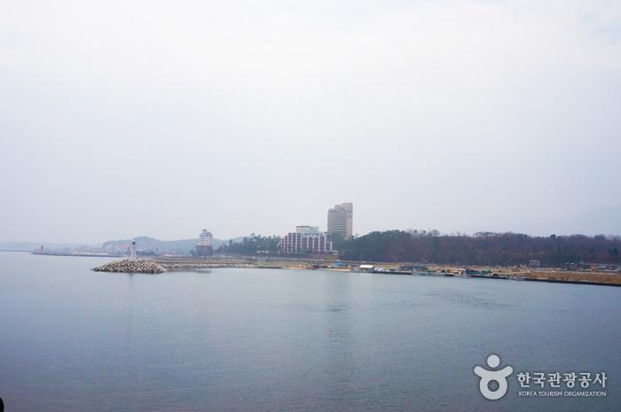 Порт Тэпхохан (대포항)