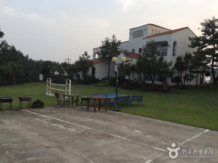 C&P度假村青年旅馆(C&P리조트 유스호스텔)
