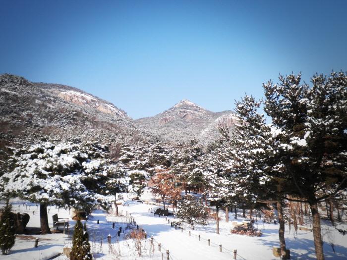 산들소리수목원 사진8