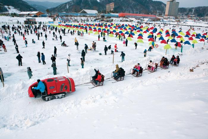 Pyeongchang Songeo Festival  ([문화관광축제] 평창송어축제)