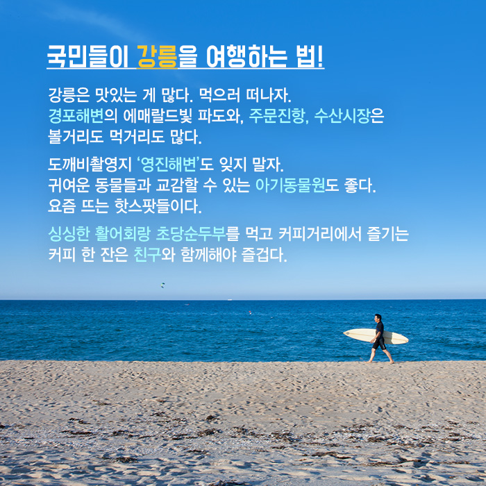 국민들이 강릉을 여행하는 법!
