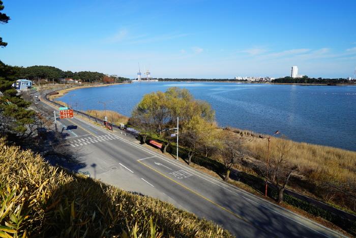 鏡浦湖(渡り鳥の飛来地)(경포호(철새도래지))