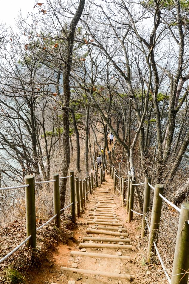 대부해솔길의 나무계단