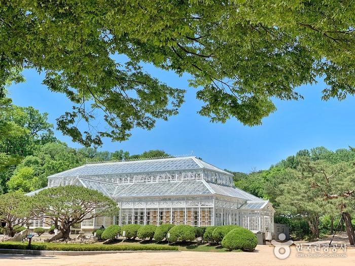 Дворец Чхангёнгун (창경궁)8
