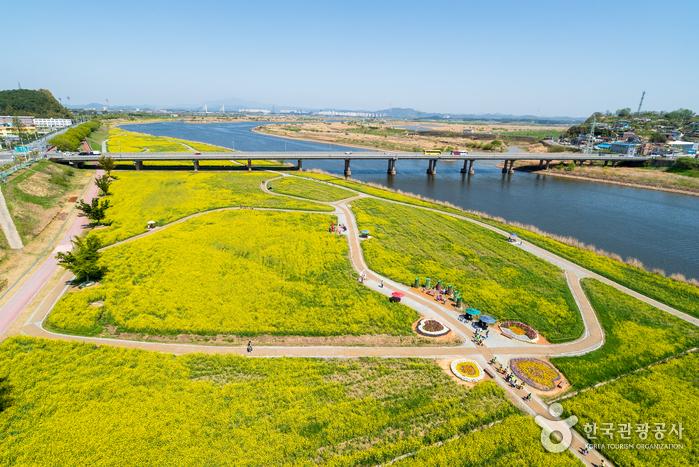 栄山江(영산강)