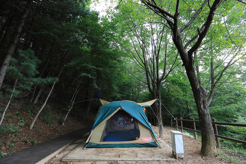 가야산국립공원 백운동 자동차야영장