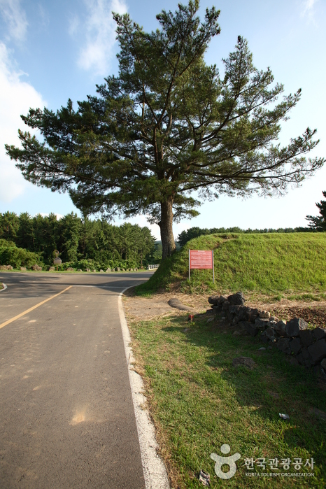 Jeju Olle Trail - Route 16 (Gonae - Gwangnyeong Olle) (제주올레 16코스 (고내-광령 올레))