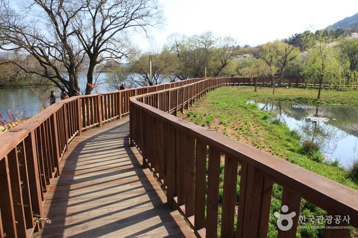 Jinhae NFRDI Environment Eco-Park (진해내수면 환경생태공원)