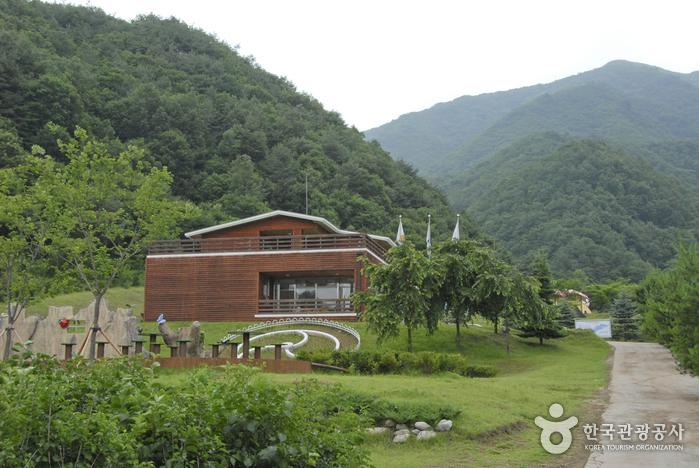 杨口生态植物园(양구생태식물원)