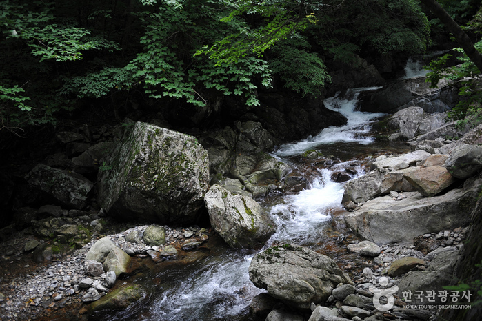 Muju Gucheondong Valley ( )