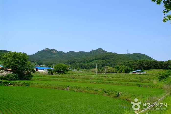 팔봉산(서산)