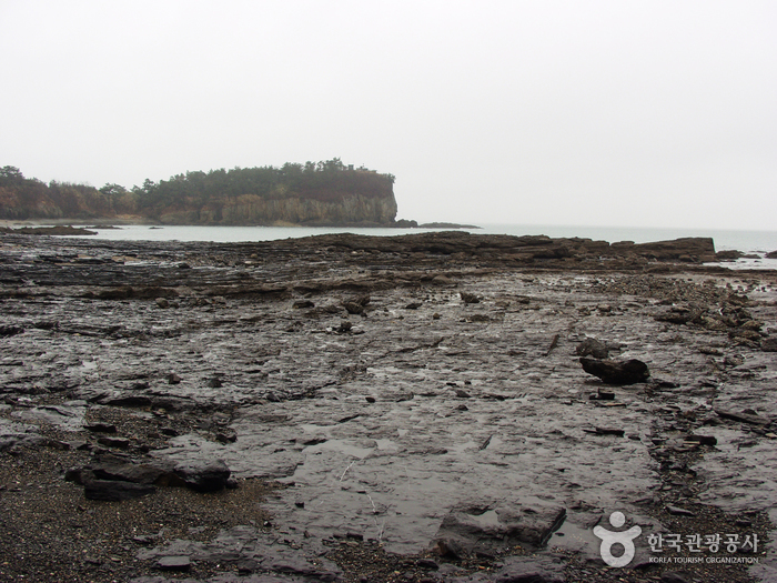 Buan Jeokbyeokgang Cliffs (부안 적벽강)