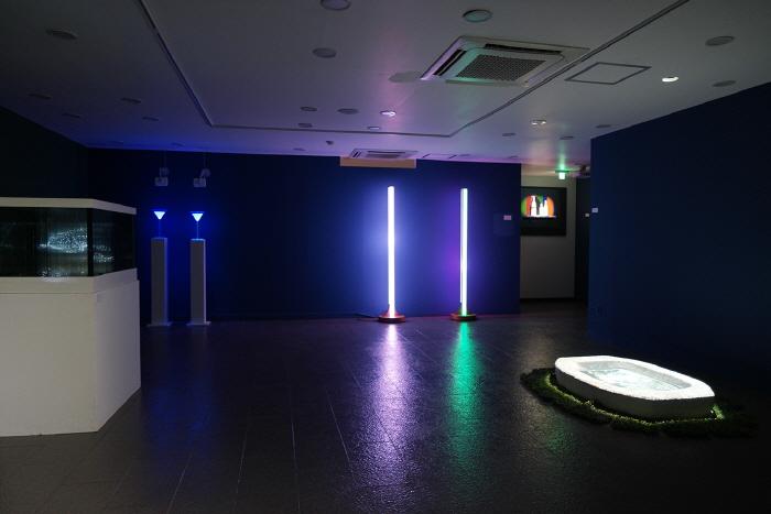 互動藝術博物館(인터렉티브아트뮤지엄)