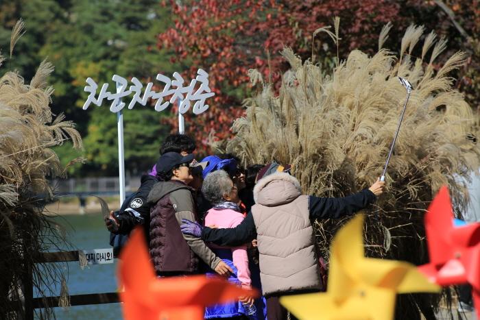 Festival des fleurs miscanthus sinensis du mont Myeongseongsan et du lac Sanjeong (산정호수 명성산 억새꽃축제 2016)