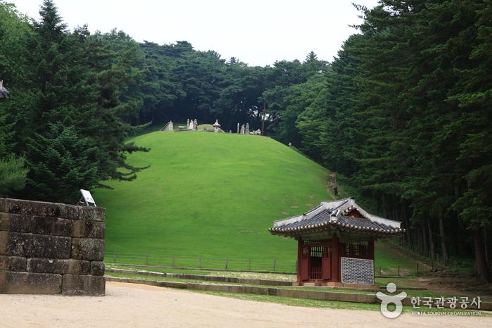 Gwangneung [UNESCO World Heritage] (남양주 광릉 [유네스코 세계문화유산])