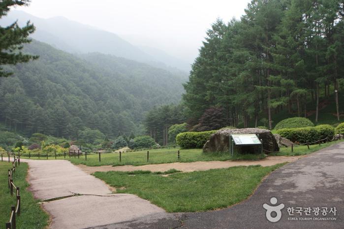 아침고요수목원 사진40