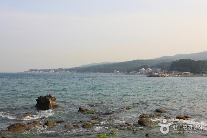 朱田鵝卵石海邊(주전몽돌해변)4