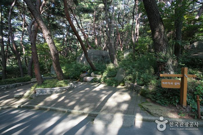 Парк Кымган (금강공원)8