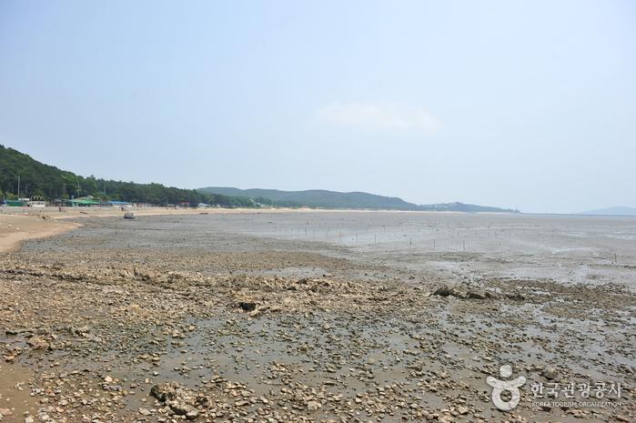 Морское побережье Масиан на острове Ёнчжондо (영종도 마시안해변)4