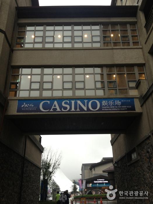 アルペンシアカジノ(알펜시아 카지노)