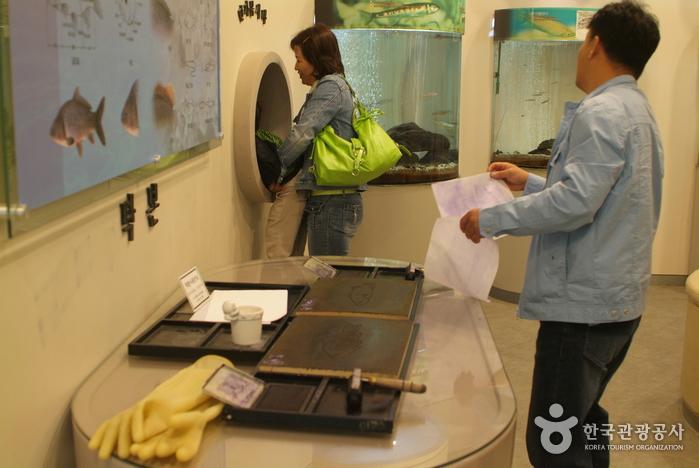 삼척 민물고기전시관
