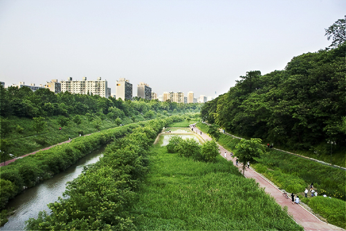 Yangjaecheon Stream Trail (양재천길)