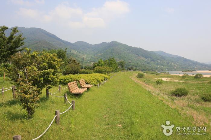 Pyeongsari Park (평사리공원)