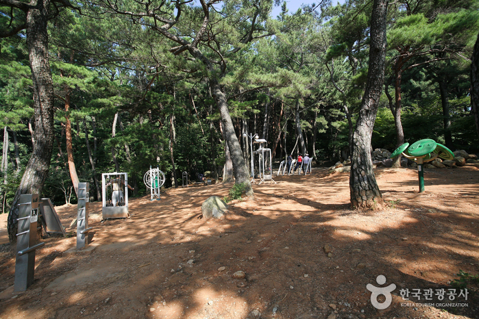 Парк Кымган (금강공원)7