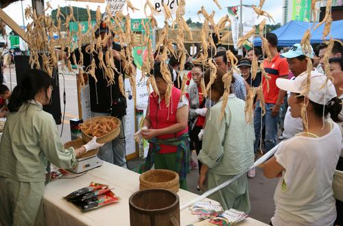 Ginseng-Markt Geumsan (금산 인삼약초시장)