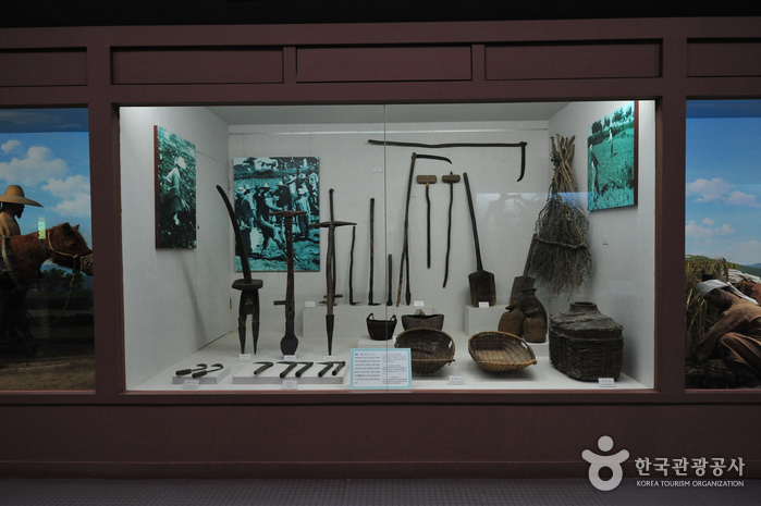 Музей фольклора и естественной истории Чечжу (제주도민속자연사박물관)26