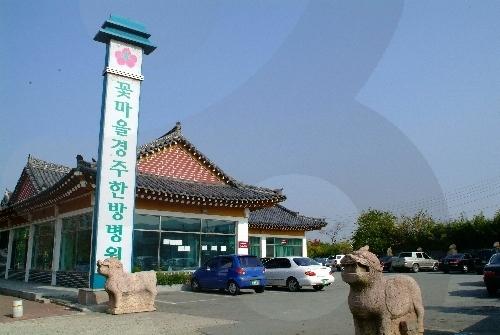 コッマウル慶州韓方病院(꽃마을경주한방병원)