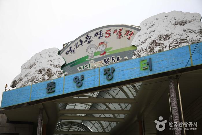 억지춘양5일장 (4, 9일)