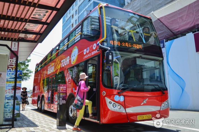 시티투어버스로 알뜰하게 즐기는 부산여행 사진