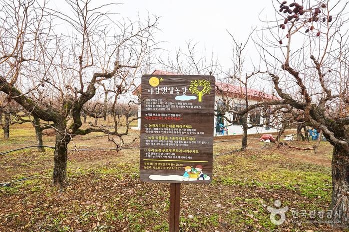パラムヘッサル農場[韓国観光品質認証](바람햇살농장[한국관광품질인증/Korea Quality])