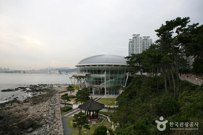 冬柏公園(동백공원)