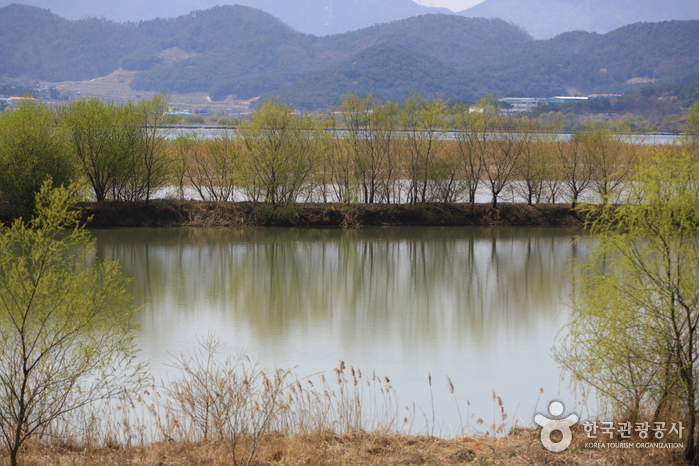 Junam Reservoir (Hab...