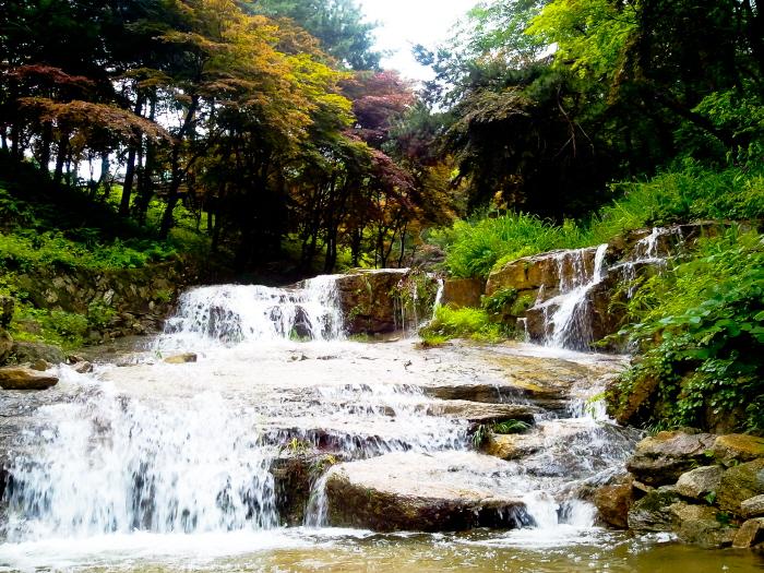 산들소리수목원 사진11